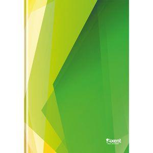Книга записная Polygon А4 картон.обл 96 л клетка Axent 8422-2-A