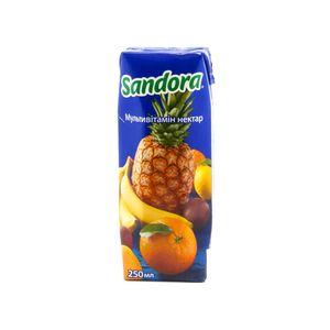 Нектар Sandora мультивитамин т/п 0,25л 10576019