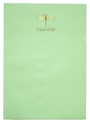 Папка-уголок А4, PASTEL, BUROMAX BM.3855